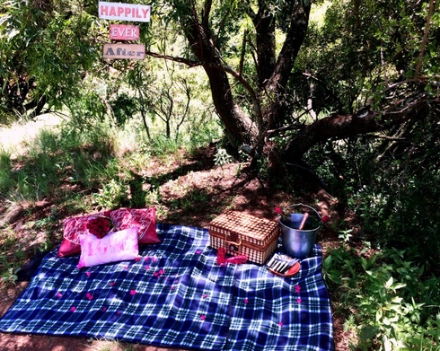 Picnic Horse trail Experience