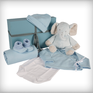 Blue Elephant Baby Box